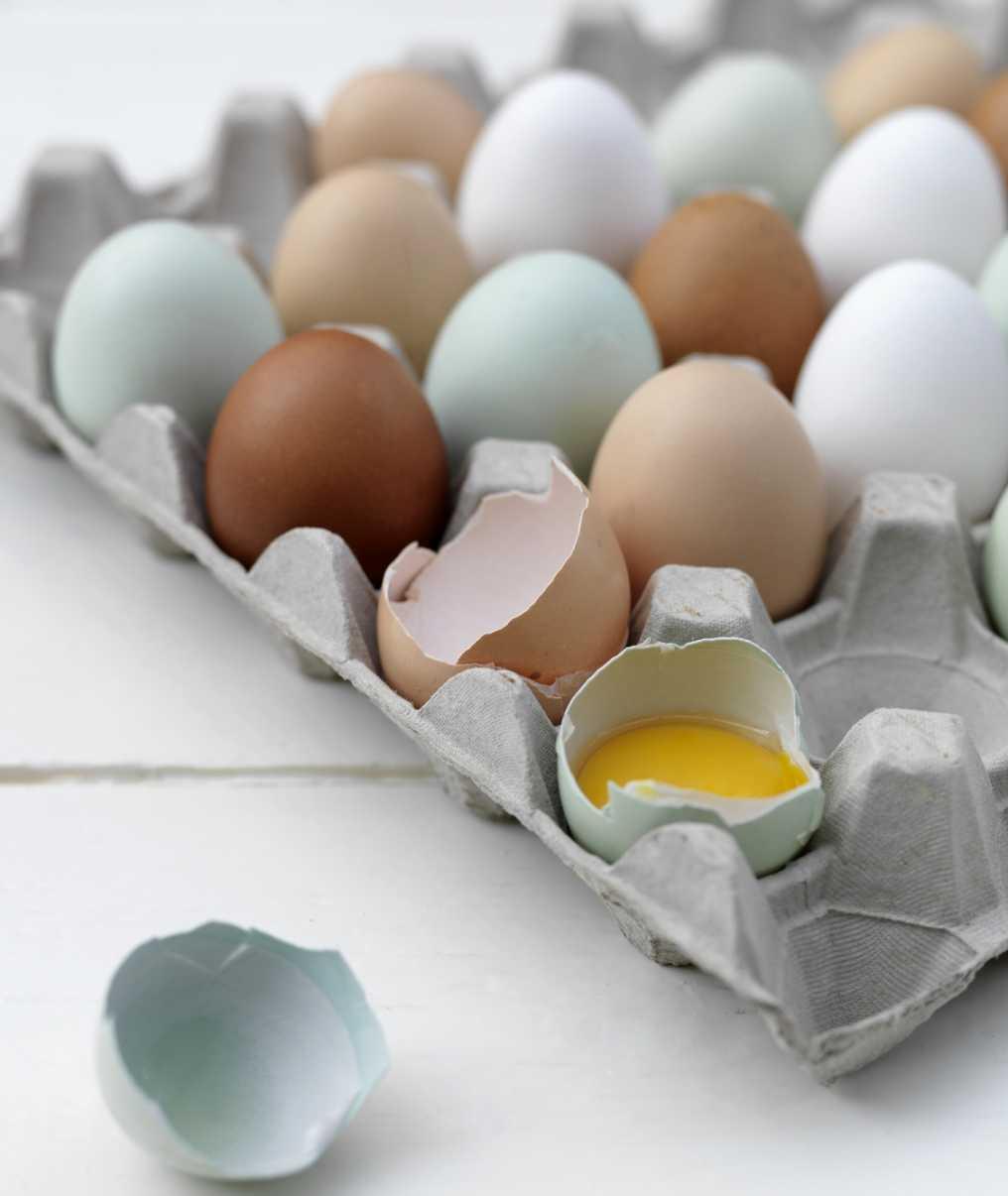 äggbricka