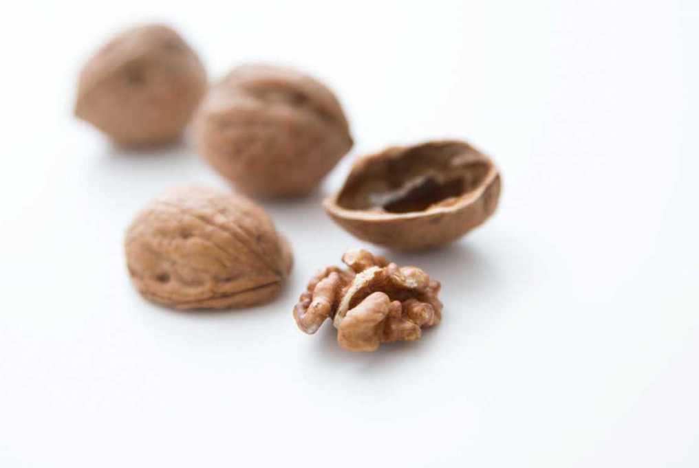 valnötter walnuts valnötskärnor sotolon