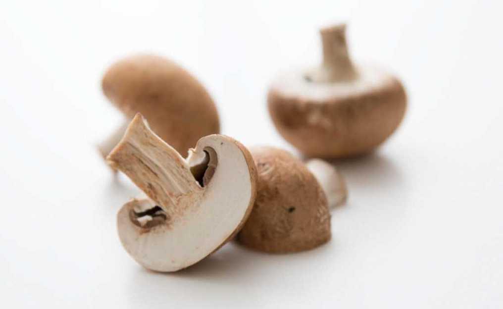champinjoner snitt svamp